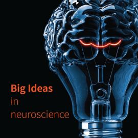 Stanford Neurosciences Institute, Big Ideas
