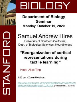 Department of Biology Seminar Series - Andrew Hires