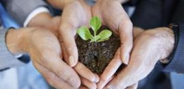 Hands holding seed with soil