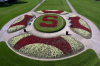 Stanford Oval flowers